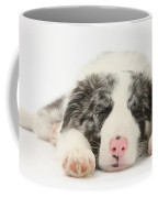 Blue Merle Border Collie Pup Coffee Mug