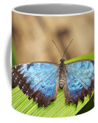 Blue Morpho Butterfly  Coffee Mug
