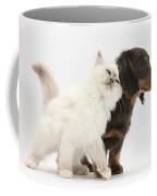 Blue-point Kitten And Dachshund Pup Coffee Mug