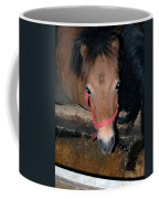 Blue Pony Eyes Coffee Mug