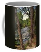 Blue Spring Branch Coffee Mug