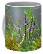 Blue Vervain - Verbena Hastata Coffee Mug