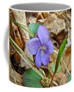 Blue Violet Wildflower - Viola Spp Coffee Mug