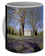 Bluebells In The Pleasure Grounds, Emo Coffee Mug