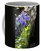 Bluebells In The Woods Coffee Mug