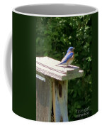 Bluebirds Make Me Happy Coffee Mug