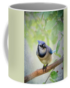 Bluejay In A Tree Coffee Mug