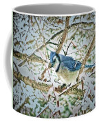 Bluejay In Birches Coffee Mug