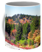 Blueridge Parkway View Near Mm 423 Coffee Mug