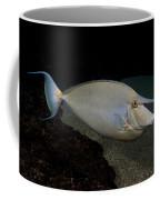 Bluespine Unicornfish Coffee Mug