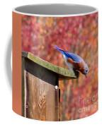 Bluey Coffee Mug