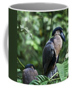 Boatbill Coffee Mug