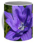 Bodacious Balloon Flower Coffee Mug