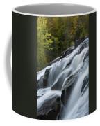Bond Falls 10 Coffee Mug