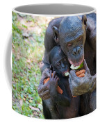 Bonobo 3 Coffee Mug