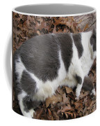 Boojer In Leaves Coffee Mug
