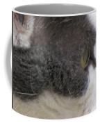 Boojer's Eye Coffee Mug