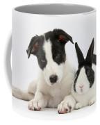 Border Collie Pup And Dutch Rabbit Coffee Mug