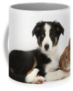 Border Collie Pup And Netherland-cross Coffee Mug