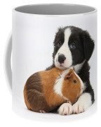 Border Collie Pup And Tricolor Guinea Coffee Mug