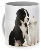 Border Collie Pup And White Kitten Coffee Mug