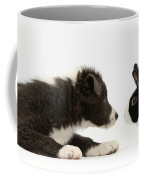 Border Collie Puppy And Rabbit Coffee Mug