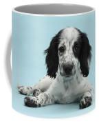 Border Collie X Cocker Spaniel Puppy Coffee Mug