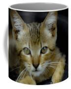Born Wild Coffee Mug
