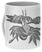 Botany: Breadfruit Tree Coffee Mug