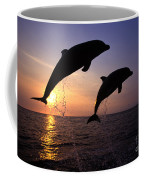 Bottlenose Dolphins Coffee Mug by Francois Gohier and Photo Researchers