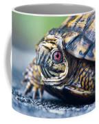 Box Turtle 1 Coffee Mug