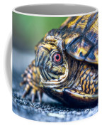 Box Turtle 2 Coffee Mug