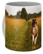 Boxer Dog Running Happily Through Field Coffee Mug by Stephanie McDowell