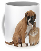 Boxer Puppy And Netherland-cross Rabbit Coffee Mug by Mark Taylor