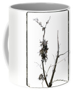 Branch Of Dried Out Flowers. Coffee Mug