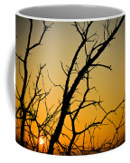 Branches Reaching The Sunset Coffee Mug