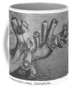 Branching Coral Coffee Mug