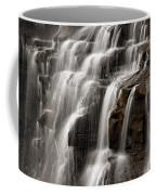 Brandywine Falls Coffee Mug