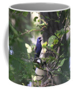 Bright Blue Coffee Mug