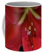Bright Rose Amaryllis Coffee Mug