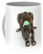 Brindle Lurcher Wearing A Bandage Coffee Mug