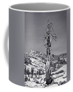 Bristlecone Pine - High Sierra Coffee Mug
