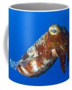 Broadclub Cuttlefish, Papua New Guinea Coffee Mug