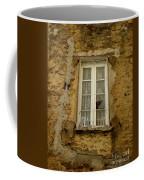 Broken Window Coffee Mug