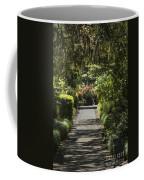 Brookgreen Gardens Path Coffee Mug