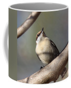 Brown And Tan Coffee Mug