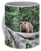 Brown Bear 209 Coffee Mug