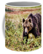 Brown Bear 210 Coffee Mug