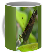 Brown Butterfly Coffee Mug