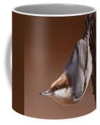 Brown-headed Nuthatch - Little Nutty Coffee Mug